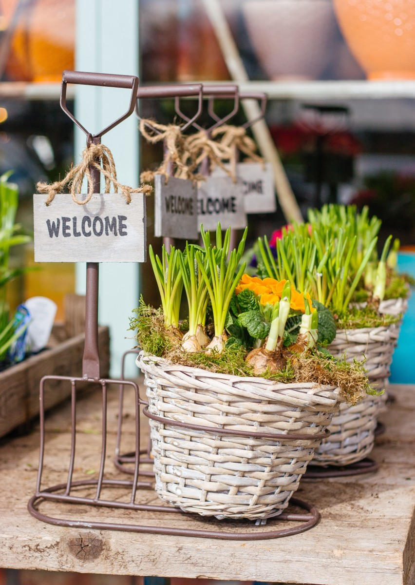 veggie baskets with welcome signs on them